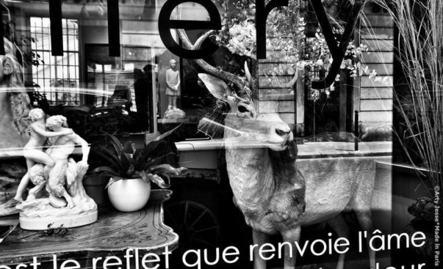 artiste peintre paris, photographie, paris pictures, beautiful bizarre, paris bnw picture